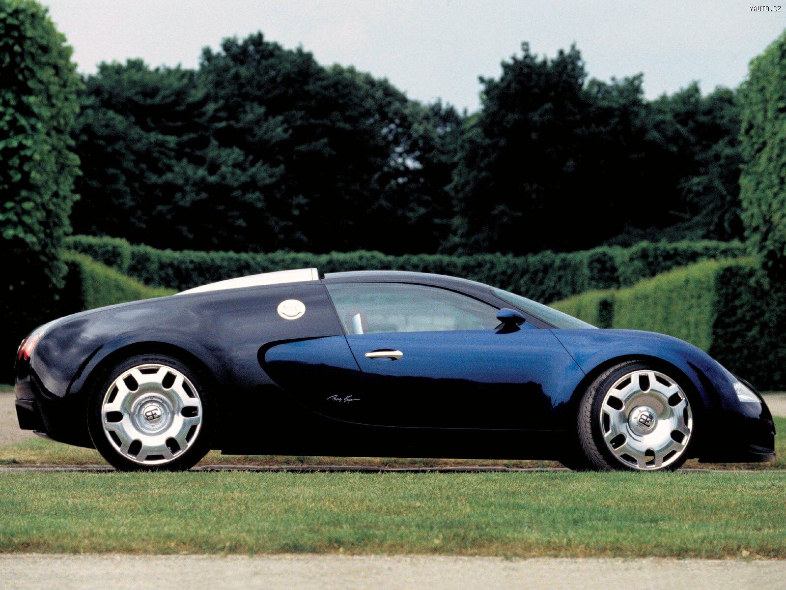 Bugatti Veyron - Auta na