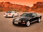 Ford Shelby GT (2006)